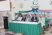 Panel including Dr. Farhat Haq, Dr. Hafeez Malik, Ambassador, Senator Waleed Iqbal, Professor Saeed Shafqat